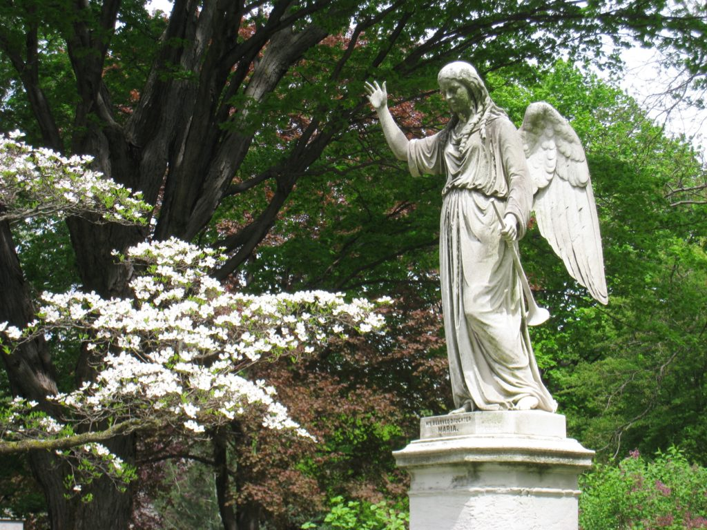 Mount_Auburn_Cemetery_-_angel_sculpture