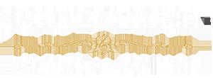 Schulmerich g5 Digital Carillon